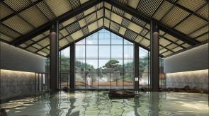 齐齐哈尔扎龙温泉会馆-泡池区室内效果图