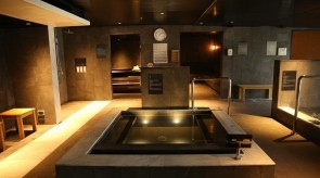 Jet bath, cool water bath, sauna...